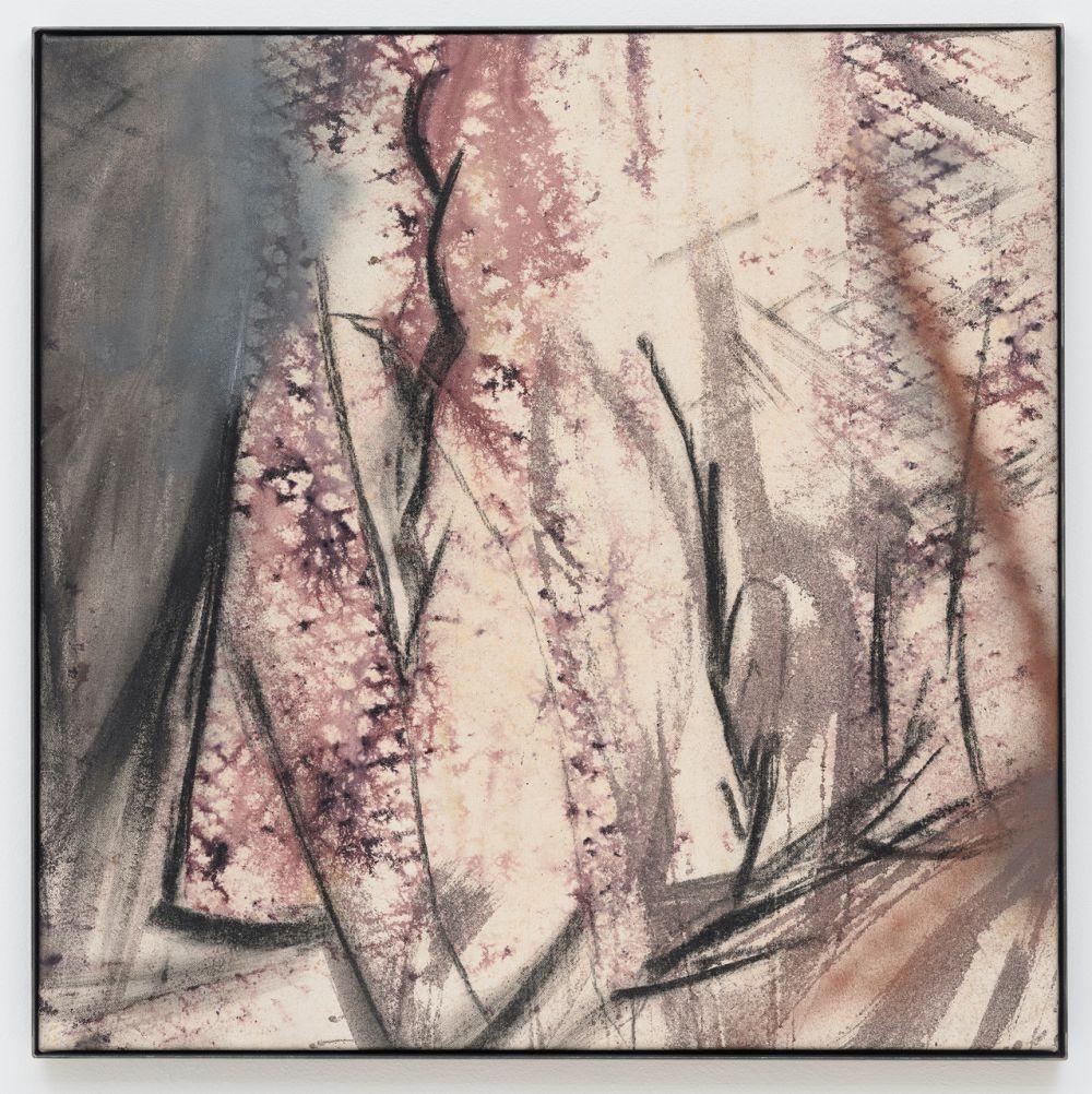 Sorh [Soil of reddish hue] 17