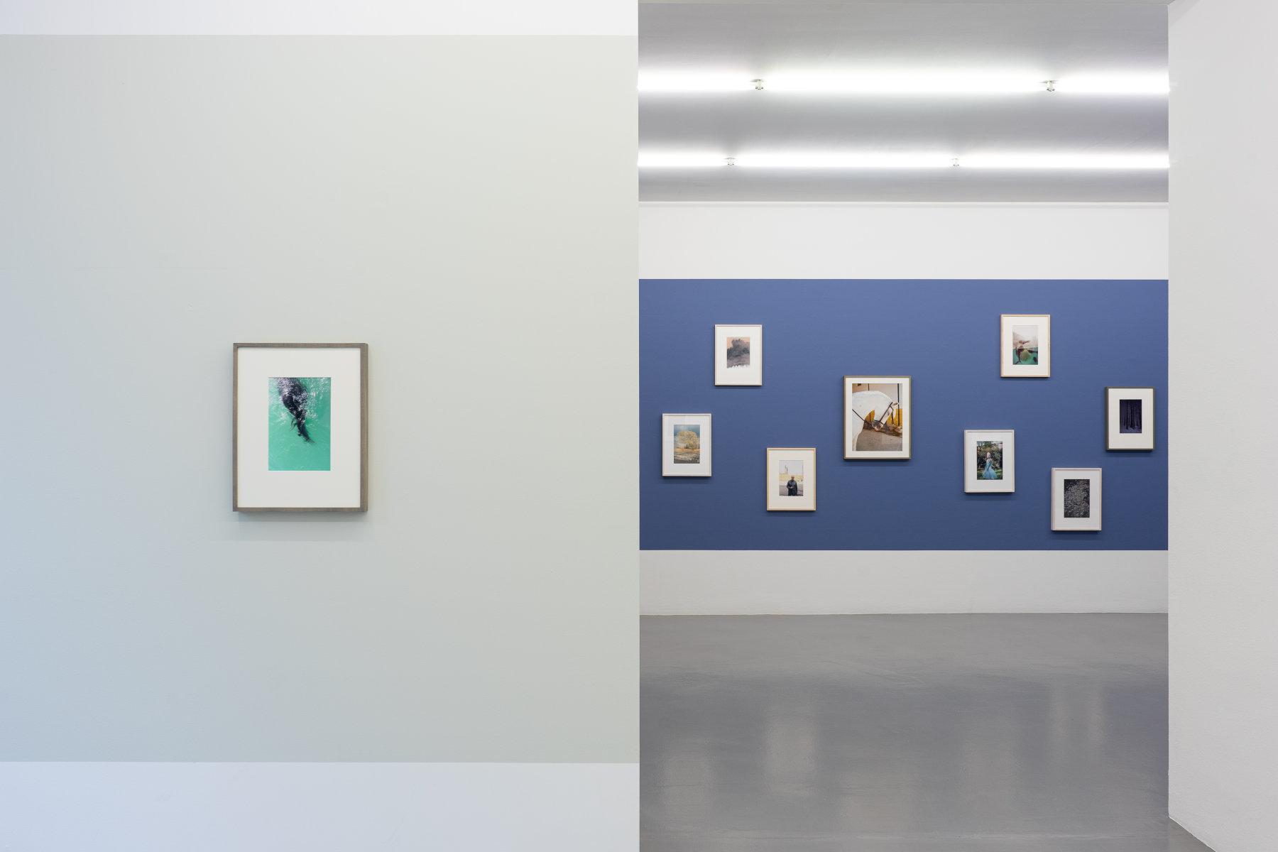 Mai 36 Galerie Jitka Hanzlova 1