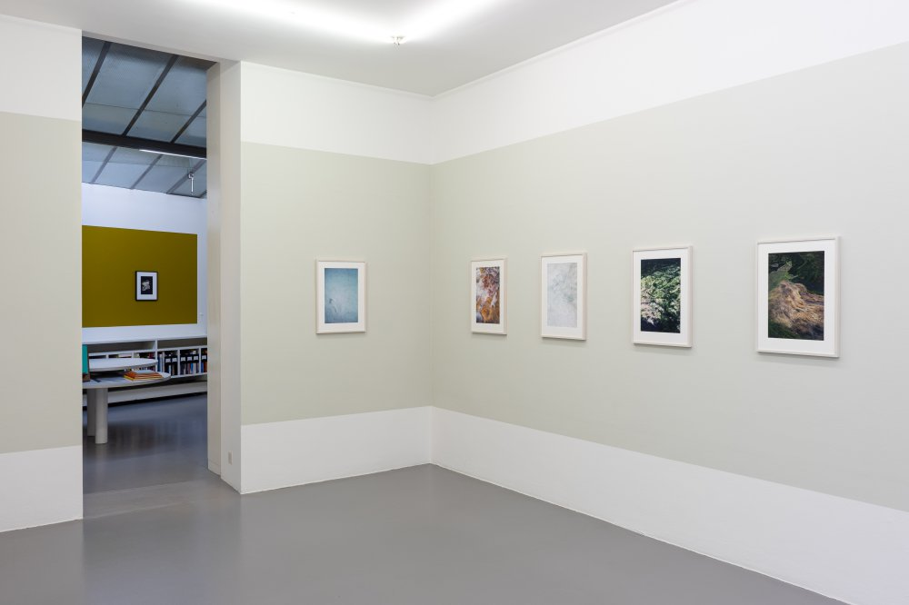 Mai 36 Galerie Jitka Hanzlova 3