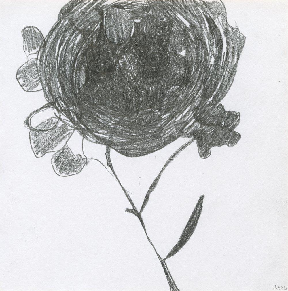 Gloom Bloom