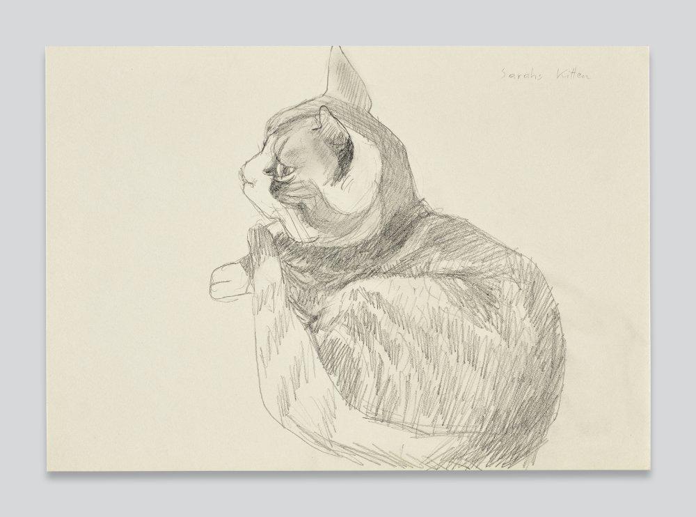 Sarahs Kitten