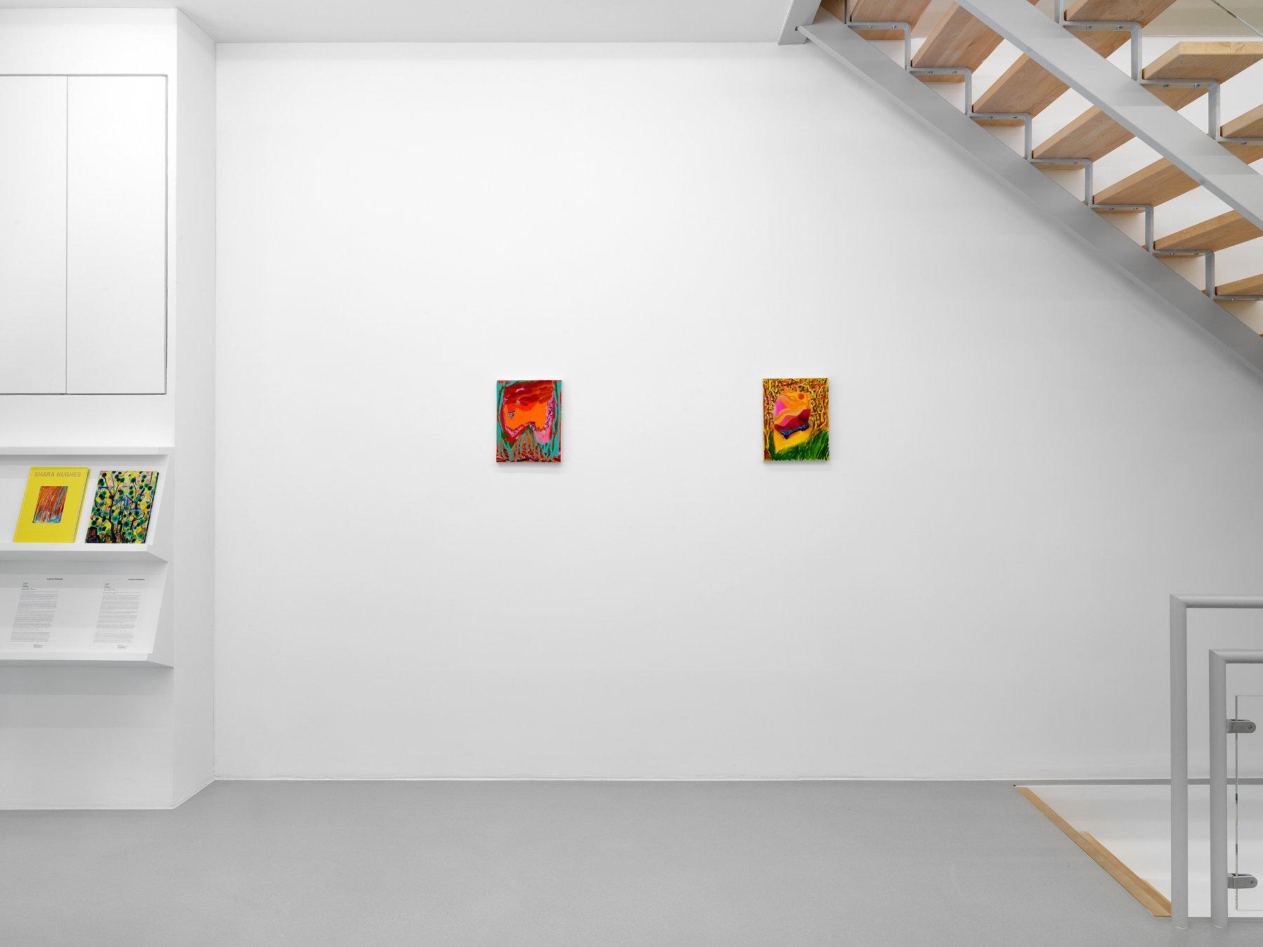 Galerie Eva Presenhuber Ramistrasse Shara Hughes 1