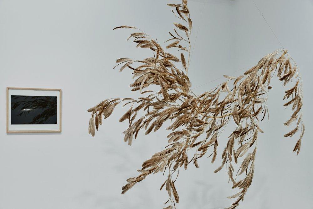 Galerie Chantal Crousel DEMAIN EST LA QUESTION 3