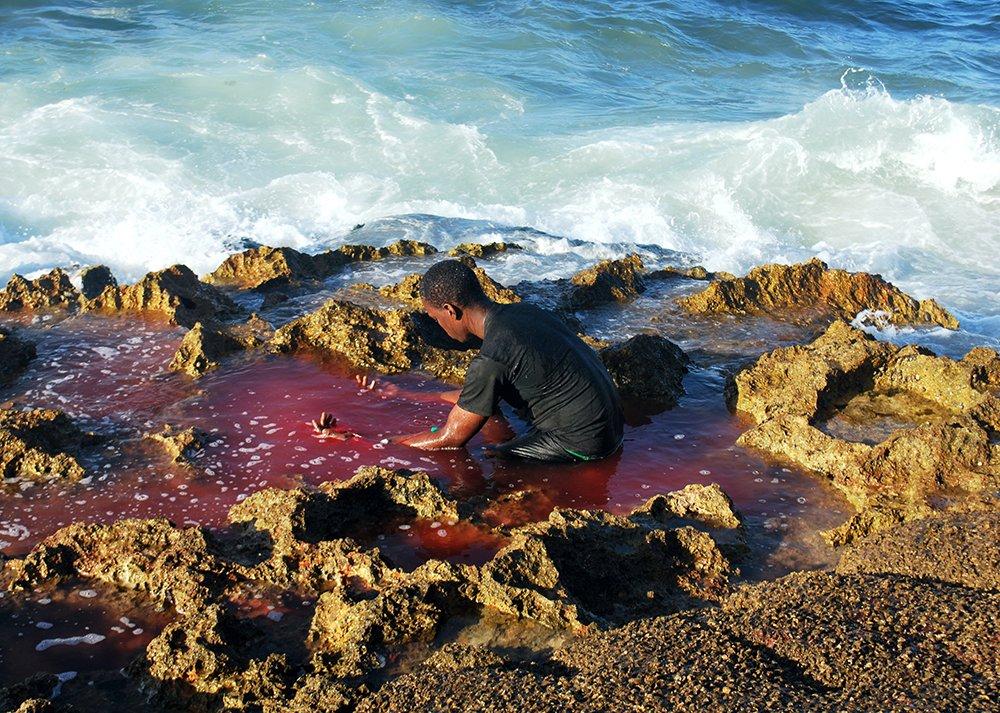 Lazos de Sangre