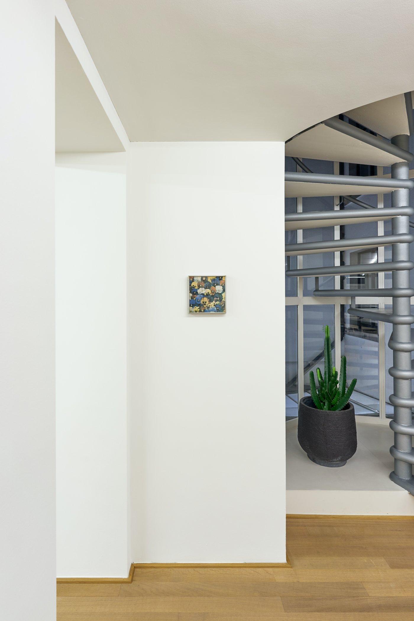 Mai 36 Galerie Cera Una Volta 5