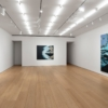 Calida Rawles: On the Other Side of Everything @Lehmann Maupin W 24th St, New York  - GalleriesNow.net